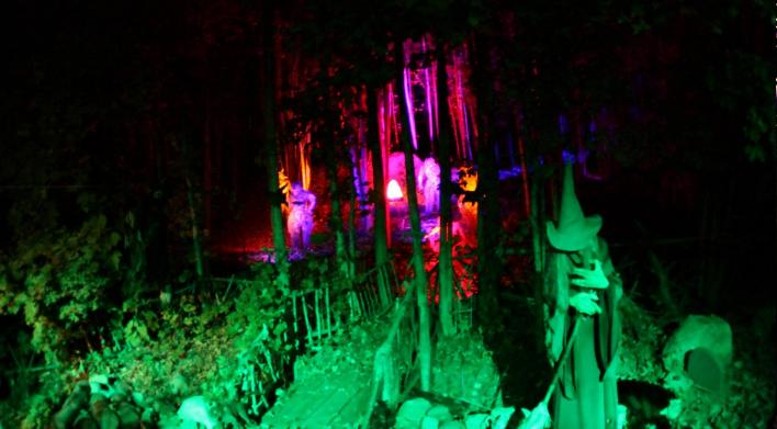 witchforest